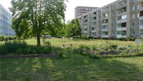 Gartnertreff_2015-08-05_Wiese_Bank