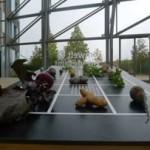 Gartnertreff_2015-11-11_UBA-Ausstellung_Karre_3